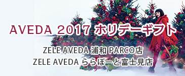 AVEDA2017ホリデーギフト
