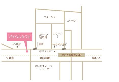 gamo_map